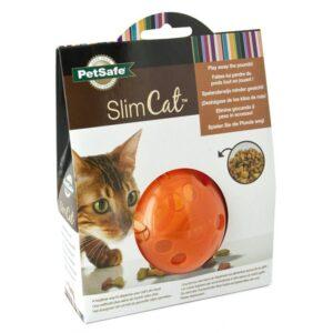SlimCat Bold - Orange